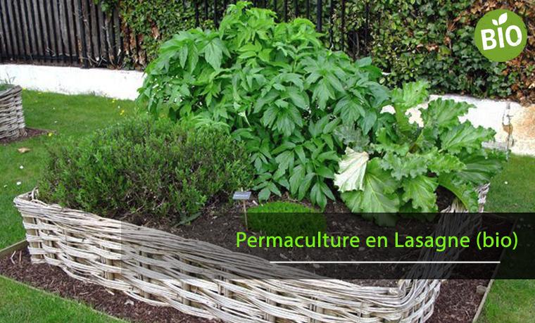 pratiquer la permaculture en lasagne pour un potager biologique astuces en ligne. Black Bedroom Furniture Sets. Home Design Ideas